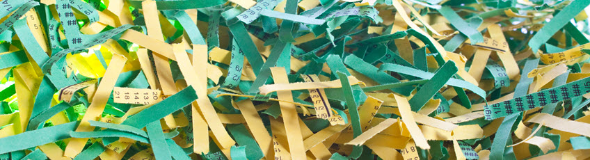 Photo of shredded documents